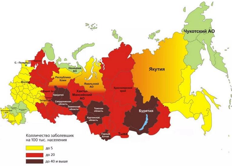 В каких странах обитают клещи?