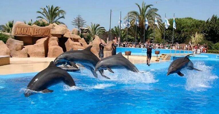 Остров Майорка, Испания