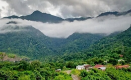 Джатинга (Индия)