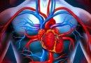 Что такое недостаточность кровообращения