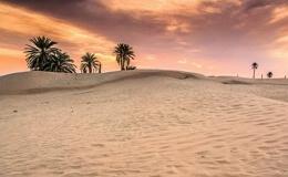 Пустыня Сахара – жемчужина Магриба